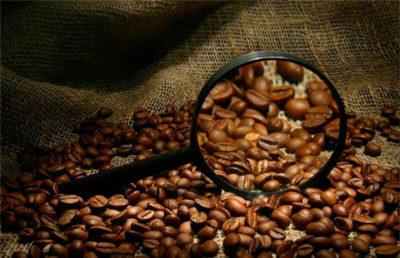 Кофе в зернах: нюансы выбора